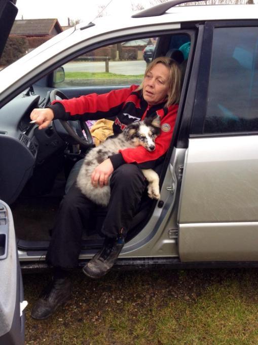 """Lille Navy på 4 mdr. var (lige som de øvrige hunde) trætte efter turen. Han fik lov at tage en lur på sin """"mor's"""" skød mens vi nød en kop varm kaffe."""