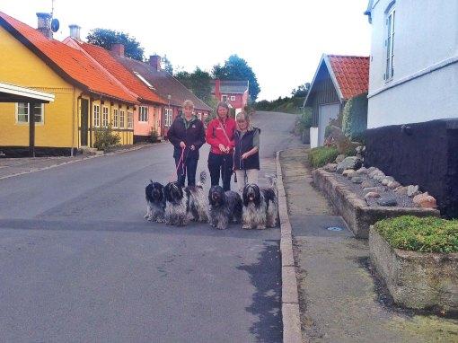 Hanne med Fregne og Flik-Flak, Rie med Rubin og Birthe med Umally