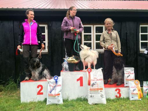 Flik-Flak på en flot andenplads. Også på tredjepladsen kom er en Schapendoes – stort tillykke til Charlotte.