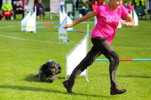 Ikke så sært vi ikke kommer hurtigere frem... den hund har jo ikke for meget ben.